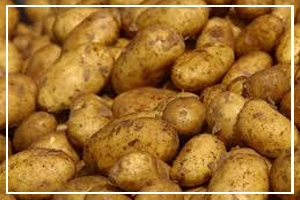 August 19 - National Potato Day
