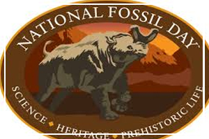 October 17 - National Fossil Day