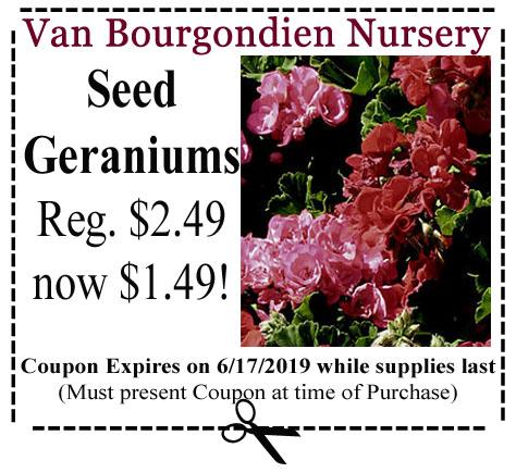 geraniums coupon